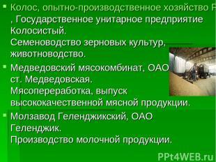 Колос, опытно-производственное хозяйство Россельхозакадемии, Государственное уни