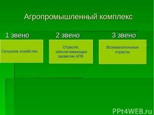 Агропромышленный комплекс 1 звено 2 звено 3 звено Сельское Промышлен- Вспомогате