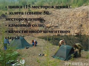 - цинка (15 месторождений), - золота (свыше 50 месторождений), - каменной соли,