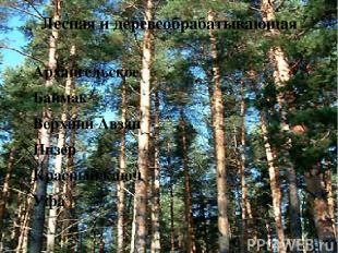 Лесная и деревеобрабатывающая Архангельское Баймак Верхний Авзян Инзер Красный к