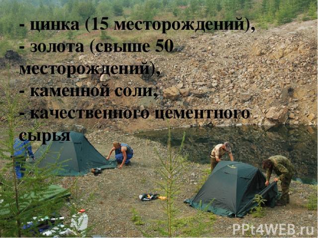 - цинка (15 месторождений), - золота (свыше 50 месторождений), - каменной соли, - качественного цементного сырья