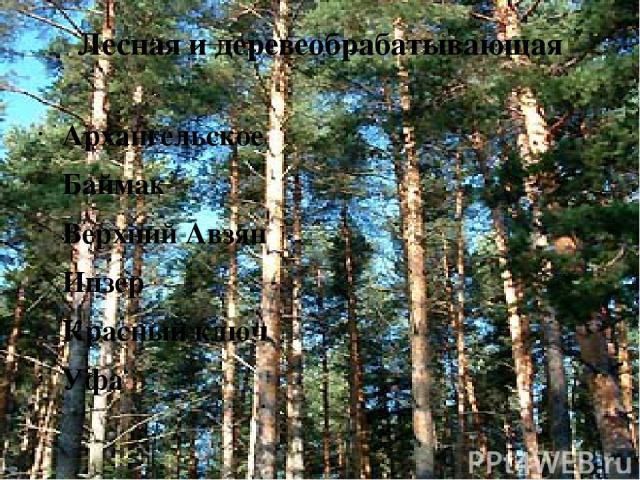 Лесная и деревеобрабатывающая Архангельское Баймак Верхний Авзян Инзер Красный ключ Уфа