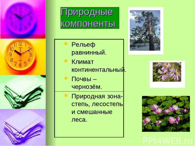 Природные компоненты Рельеф равнинный. Климат континентальный. Почвы – чернозём. Природная зона- степь, лесостепь и смешанные леса.