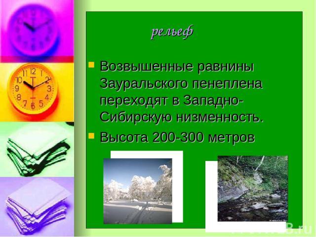 рельеф Возвышенные равнины Зауральского пенеплена переходят в Западно-Сибирскую низменность. Высота 200-300 метров