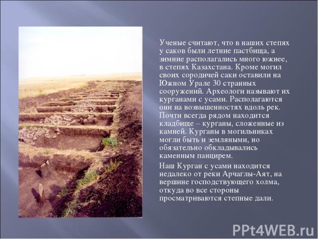 Ученые считают, что в наших степях у саков были летние пастбища, а зимние располагались много южнее, в степях Казахстана. Кроме могил своих сородичей саки оставили на Южном Урале 30 странных сооружений. Археологи называют их курганами с усами. Распо…