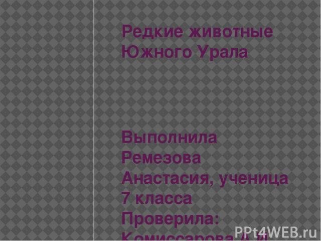 Редкие животные Южного Урала Выполнила Ремезова Анастасия, ученица 7 класса Проверила: Комиссарова А.И.