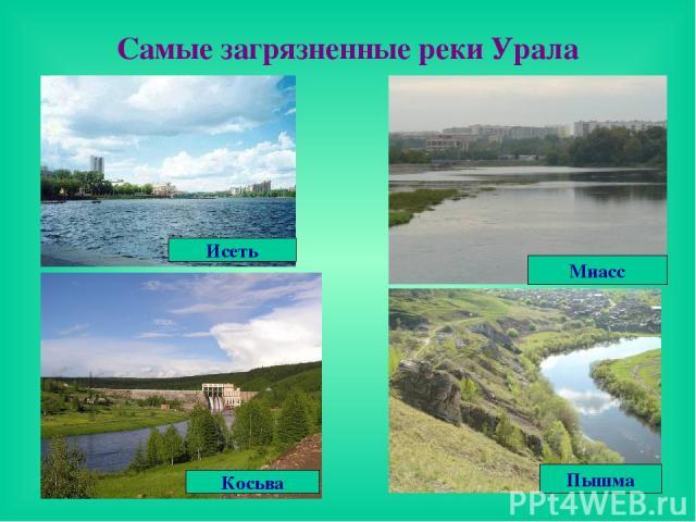 Самые загрязненные реки Урала Исеть Косьва Миасс Пышма