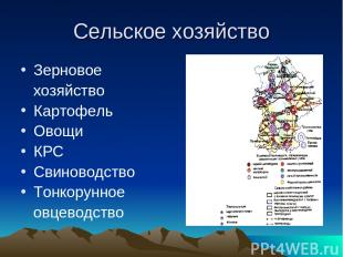 Cельское хозяйство Зерновое хозяйство Картофель Овощи КРС Свиноводство Тонкорунн