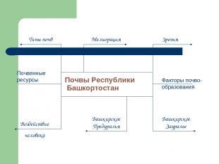 Почвы Республики Башкортостан Башкирское Предуралья Башкирское Зауралье Типы поч