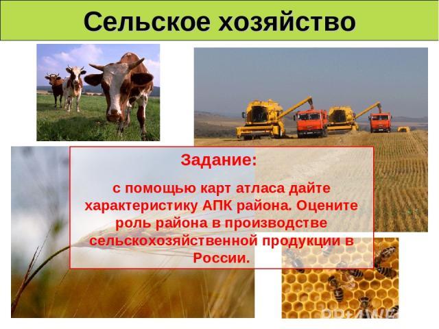 Сельское хозяйство Задание: с помощью карт атласа дайте характеристику АПК района. Оцените роль района в производстве сельскохозяйственной продукции в России.