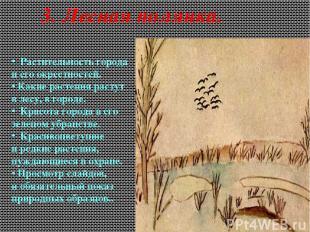 3. Лесная полянка. Растительность города иего окрестностей. Какие растения раст