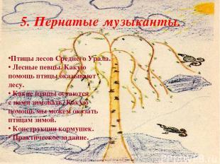 5. Пернатые музыканты. Птицы лесов Среднего Урала. Лесные певцы. Какую помощь пт