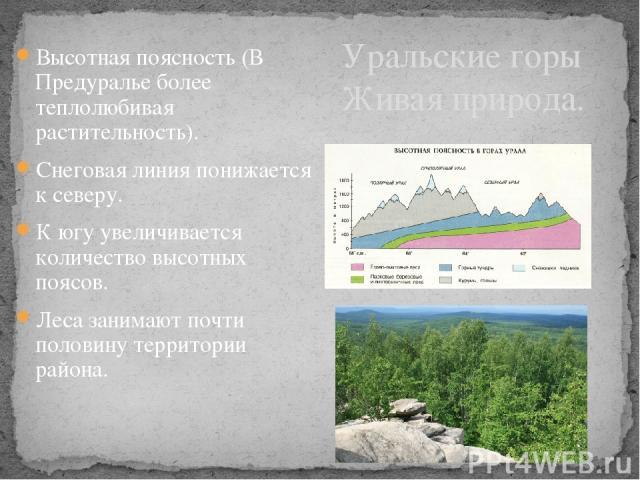 Высотная поясность (В Предуралье более теплолюбивая растительность). Снеговая линия понижается к северу. К югу увеличивается количество высотных поясов. Леса занимают почти половину территории района. Уральские горы Живая природа.