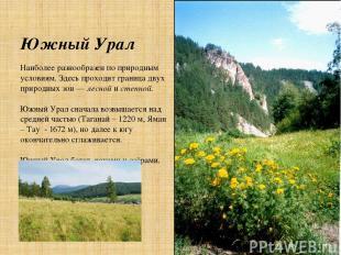 Южный Урал Наиболее разнообразен по природным условиям. Здесь проходит граница д