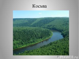 Косьва