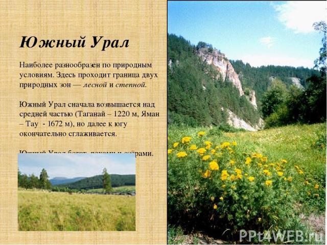 Южный Урал Наиболее разнообразен по природным условиям. Здесь проходит граница двух природных зон — лесной и степной. Южный Урал сначала возвышается над средней частью (Таганай – 1220 м, Яман – Тау - 1672 м), но далее к югу окончательно сглаживается…