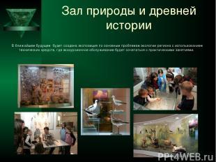 Зал природы и древней истории В ближайшем будущем будет создана экспозиция по ос