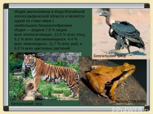Индия расположена в Индо-Малайской зоогеографической области и является одной из