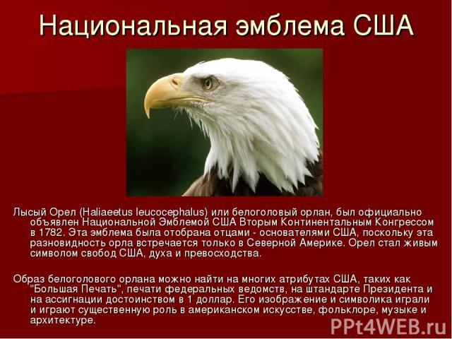 Национальная эмблема США Лысый Орел (Haliaeetus leucocephalus) или белоголовый орлан, был официально объявлен Национальной Эмблемой США Вторым Континентальным Конгрессом в 1782. Эта эмблема была отобрана отцами - основателями США, поскольку эта разн…