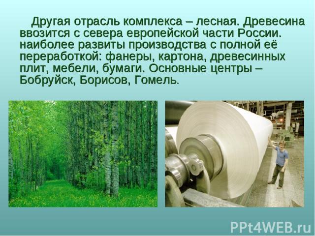 Другая отрасль комплекса – лесная. Древесина ввозится с севера европейской части России. наиболее развиты производства с полной её переработкой: фанеры, картона, древесинных плит, мебели, бумаги. Основные центры – Бобруйск, Борисов, Гомель.