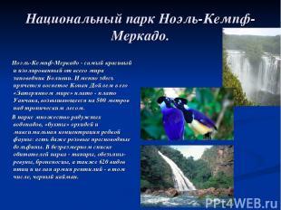Национальный парк Ноэль-Кемпф-Меркадо. Ноэль-Кемпф-Меркадо - самый красивый и из