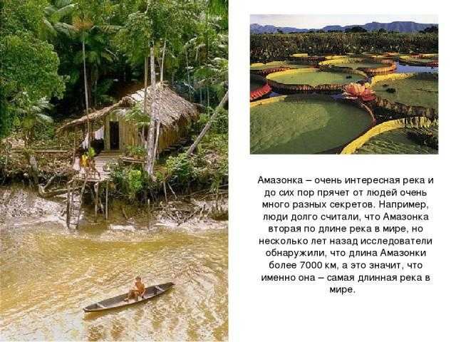 Амазонка – очень интересная река и до сих пор прячет от людей очень много разных секретов. Например, люди долго считали, что Амазонка вторая по длине река в мире, но несколько лет назад исследователи обнаружили, что длина Амазонки более 7000 км, а э…