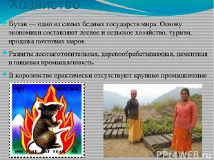 Хозяйство Бутан — одно из самых бедных государств мира. Основу экономики составл