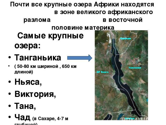 Почти все крупные озера Африки находятся в зоне великого африканского разлома в восточной половине материка Самые крупные озера: Танганьика ( 50-80 км шириной , 650 км длиной) Ньяса, Виктория, Тана, Чад (в Сахаре, 4-7 м глубиной)
