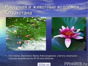 Растения и животные водоёмов Казахстана Составила: Борисенко Ирина Александровна