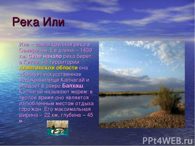 Река Или Или – самая крупная река в Семиречье. Ее длина – 1439 км. Свое начало река берет в Китае, на территории Алматинской области она образует искусственное водохранилище Капчагай и впадает в озеро Балхаш. Капчагай называют морем: в теплое время …