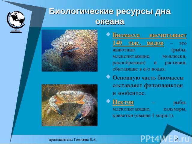 преподаватель: Головина Е.А. * Биологические ресурсы дна океана Биомасса насчитывает 140 тыс. видов – это животные (рыбы, млекопитающие, моллюски, ракообразные) и растения, обитающие в его водах. Основную часть биомассы составляет фитопланктон и зоо…