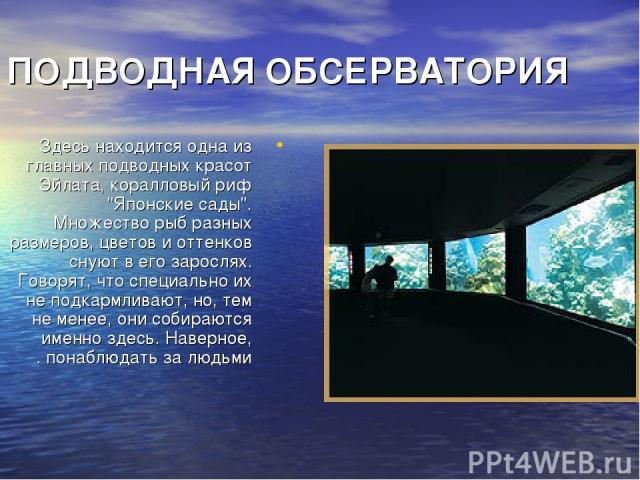 ПОДВОДНАЯ ОБСЕРВАТОРИЯ Здесь находится одна из главных подводных красот Эйлата, коралловый риф