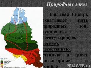 Западная Сибирь охватывает пять природных зон: тундровую, лесотундровую, лесную,