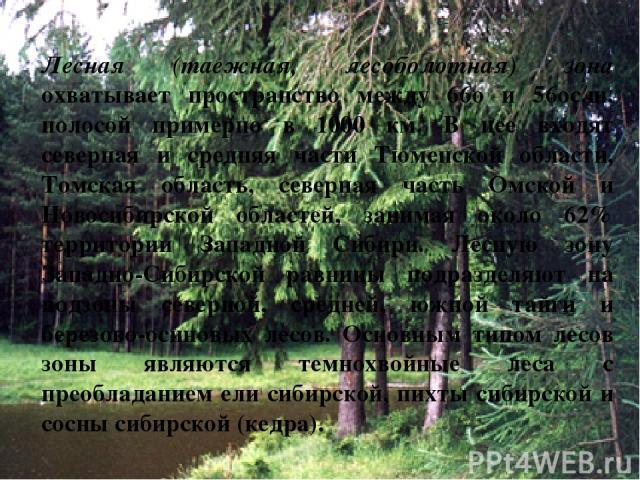 Лесная (таежная, лесоболотная) зона охватывает пространство между 66o и 56oс.ш. полосой примерно в 1000 км. В нее входят северная и средняя части Тюменской области, Томская область, северная часть Омской и Новосибирской областей, занимая около 62% т…