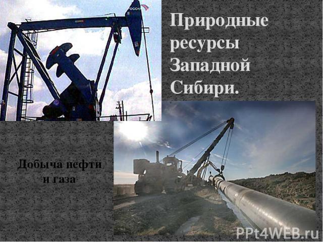 Природные ресурсы Западной Сибири. Добыча нефти и газа