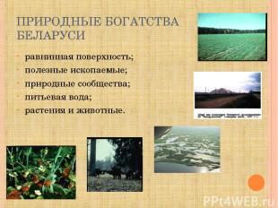 ПРИРОДНЫЕ БОГАТСТВА БЕЛАРУСИ равнинная поверхность; полезные ископаемые; природн
