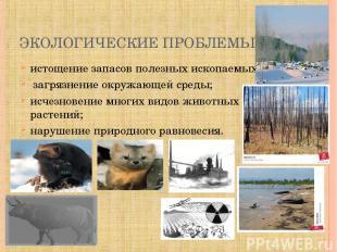 ЭКОЛОГИЧЕСКИЕ ПРОБЛЕМЫ: истощение запасов полезных ископаемых; загрязнение окруж