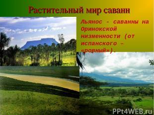 Растительный мир саванн Льянос - саванны на Оринокской низменности (от испанског