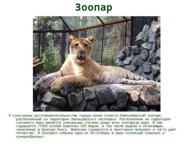 Зоопарк К культурным достопримечательностям города можно отнести Новосибирский зоопарк, расположенный на территории Заельцовского лесопарка. Расположение на территории соснового бора является уникальным случаем среди всех зоопарков мира. В нём содер…