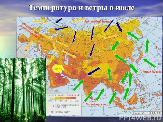 Температура и ветры в июле Западный перенос воздушных масс Летний муссон Летний муссон Арктический воздух +52 °С