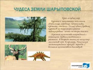 Край голубых озер Курганы и могильники, поселения, святилища, городища, петрогли