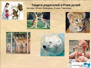 Тащите родителей в Роев ручей Авторы: Юлия Лебедева, Елена Тимченко
