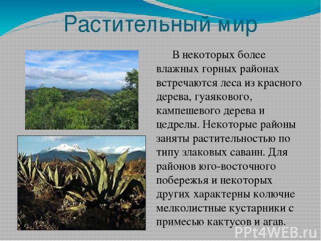 Растительный мир В некоторых более влажных горных районах встречаются леса из красного дерева, гуаякового, кампешевого дерева и цедрелы. Некоторые районы заняты растительностью по типу злаковых саванн. Для районов юго-восточного побережья и некоторы…