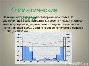 Климатические условия Саванны находятся в субэкваториальном поясе. В саваннах дв