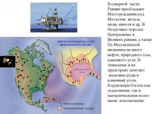 В северной части Равнин преобладают Месторождения руд Металлов: железа, меди, ни