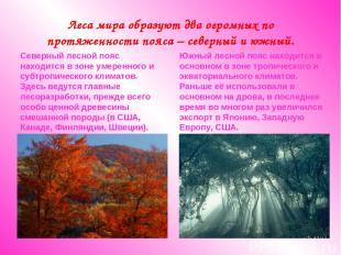Леса мира образуют два огромных по протяженности пояса – северный и южный. Север