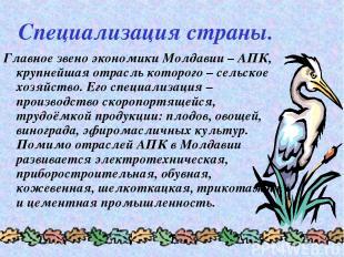 Специализация страны. Главное звено экономики Молдавии – АПК, крупнейшая отрасль