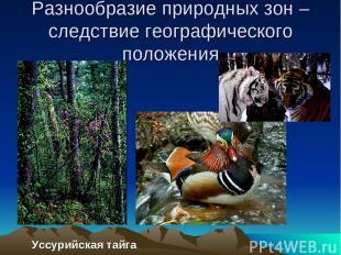 Разнообразие природных зон – следствие географического положения Уссурийская тай