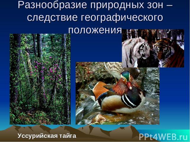 Разнообразие природных зон – следствие географического положения Уссурийская тайга