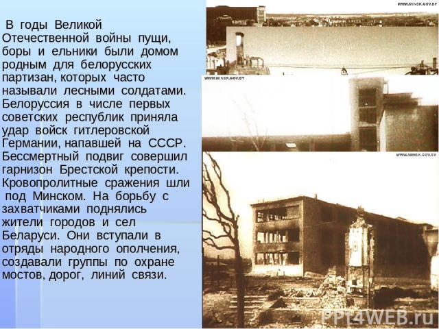 В годы Великой Отечественной войны пущи, боры и ельники были домом родным для белорусских партизан, которых часто называли лесными солдатами. Белоруссия в числе первых советских республик приняла удар войск гитлеровской Германии, напавшей на СССР. Б…